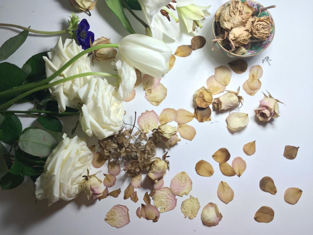flower transformation FYHA