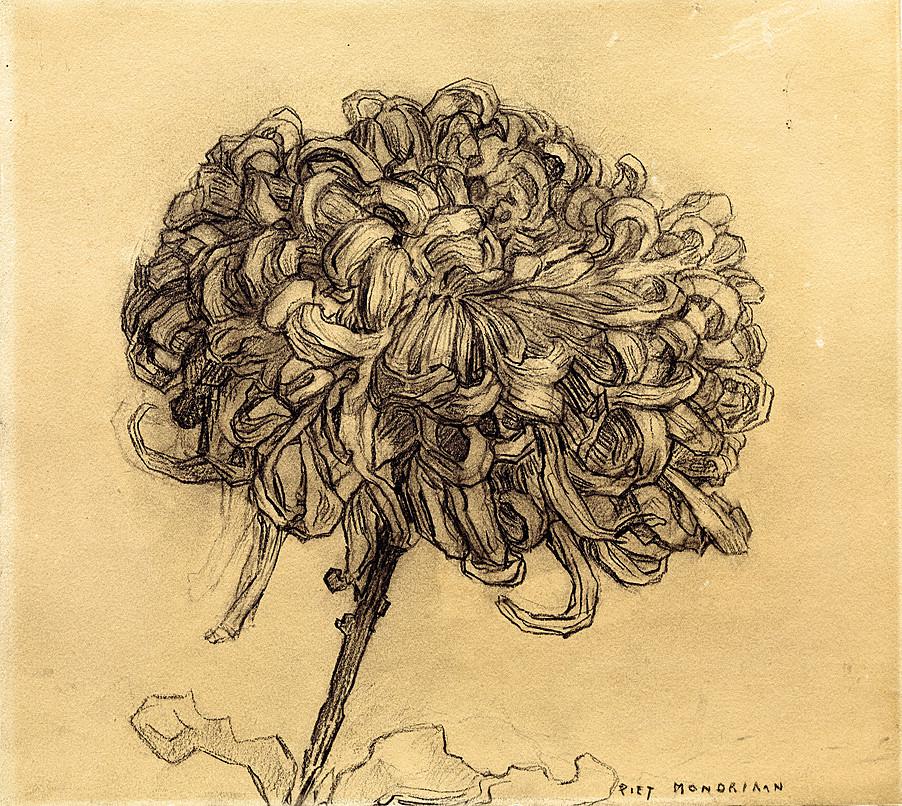 piet-mondriaan- Chrysanthum